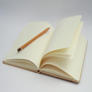 Atelier d'écriture à la manière de Rabelais